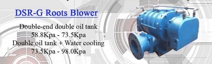 Chemical Industry High Pressure Roots Blower With Inlet Filter Silencer