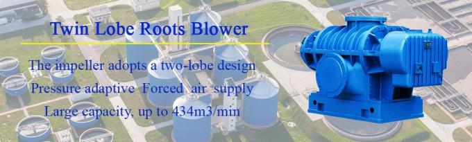 DRRF240 twin lobes oxidation flue gas desulfurization roots blower in power plant